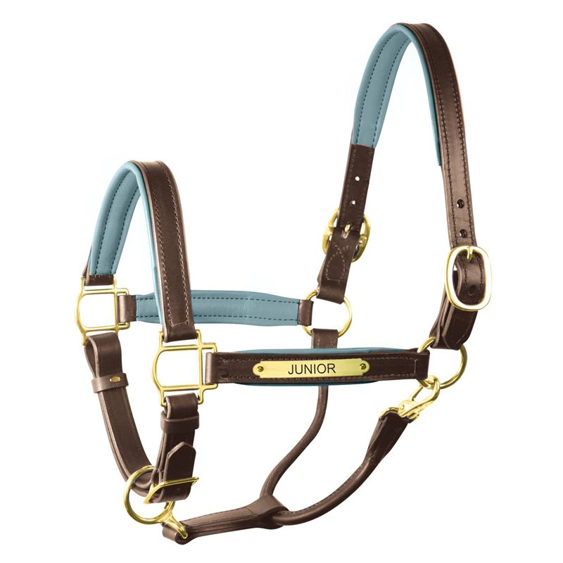 Leather Halters & Leads