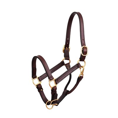 "1"" YEARLING HAVANA SHOW HALTER"