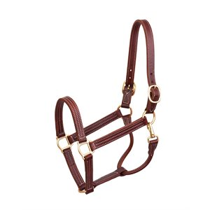 PROFESSIONAL SHOW HALTER