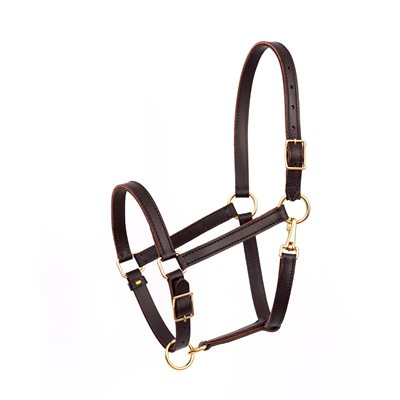 "7 / 8"" HORSE VALUE WORK HALTER HAVANA"