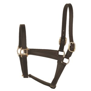 TRACK STYLE LEATHER TURNOUT HALTER