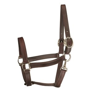 TRACK STYLE LEATHER TURNOUT HALTER W / SNAP