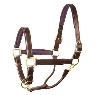 "1"" OVERSIZE HAVANA / BROWN PADDED HALTER"