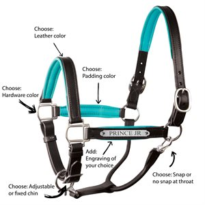 CUSTOM PADDED LEATHER HALTER W / PLATE