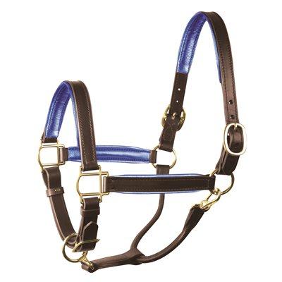 "1"" HORSE METALLIC HAVANA / BLUE PADDED HALTER W / BRASS HARDWARE"