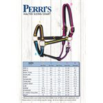 "1"" HORSE METALLIC HAVANA / BLUE PADDED HALTER W / BRASS HARDWARE"