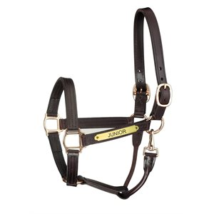 PREMIUM TRACK HALTER WITH SNAP HALTER W / PLATE