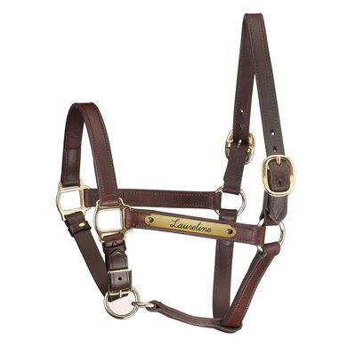 HAVANA HORSE ADJ CHIN TRACK STYLE HALTER W / PLATE
