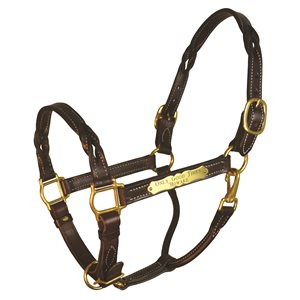 TWISTED LEATHER HALTER W / PLATE