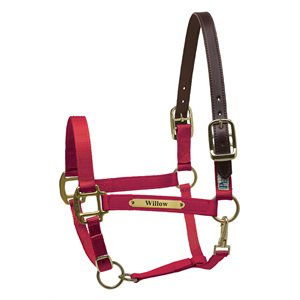 PREMIUM NYLON SAFETY HALTER W / PLATE