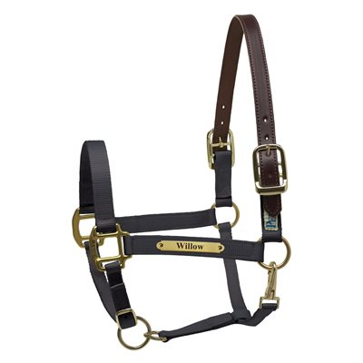 BLACK HORSE PREMIUM NYLON SAFETY HALTER W / PLATE KIT