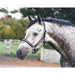 HORSE SILVER BLING BLACK PADDED HALTER W / STAINLESS STEEL HARDWARE